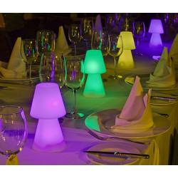 Lámpara de sobremesa Led RGB con mando, 20 cm. 3,4W