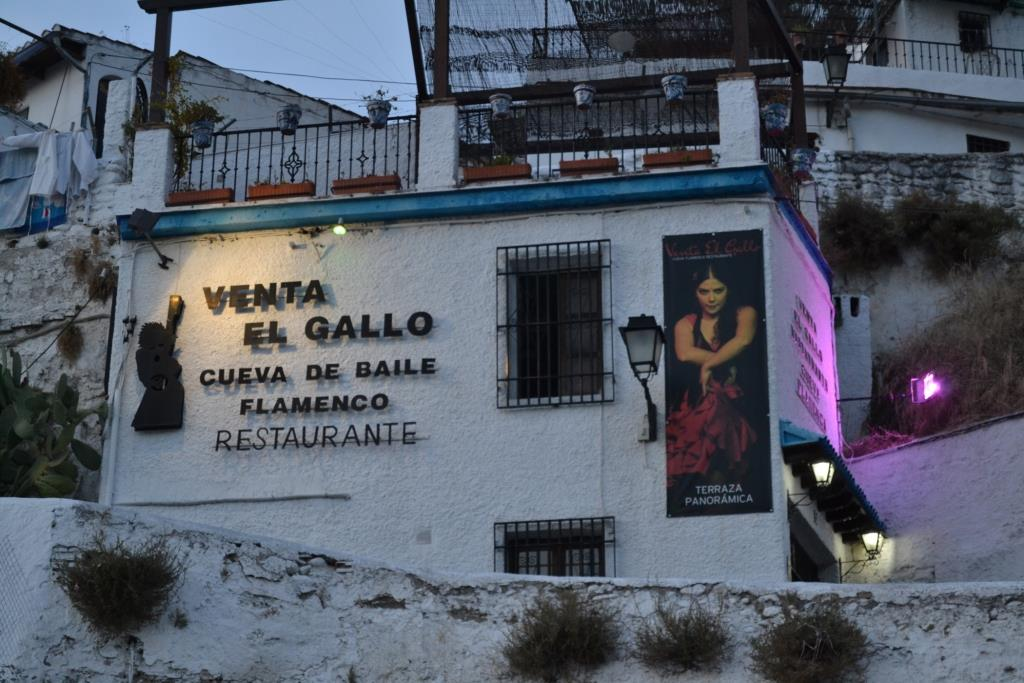 Instalacion-restaurante-gallo